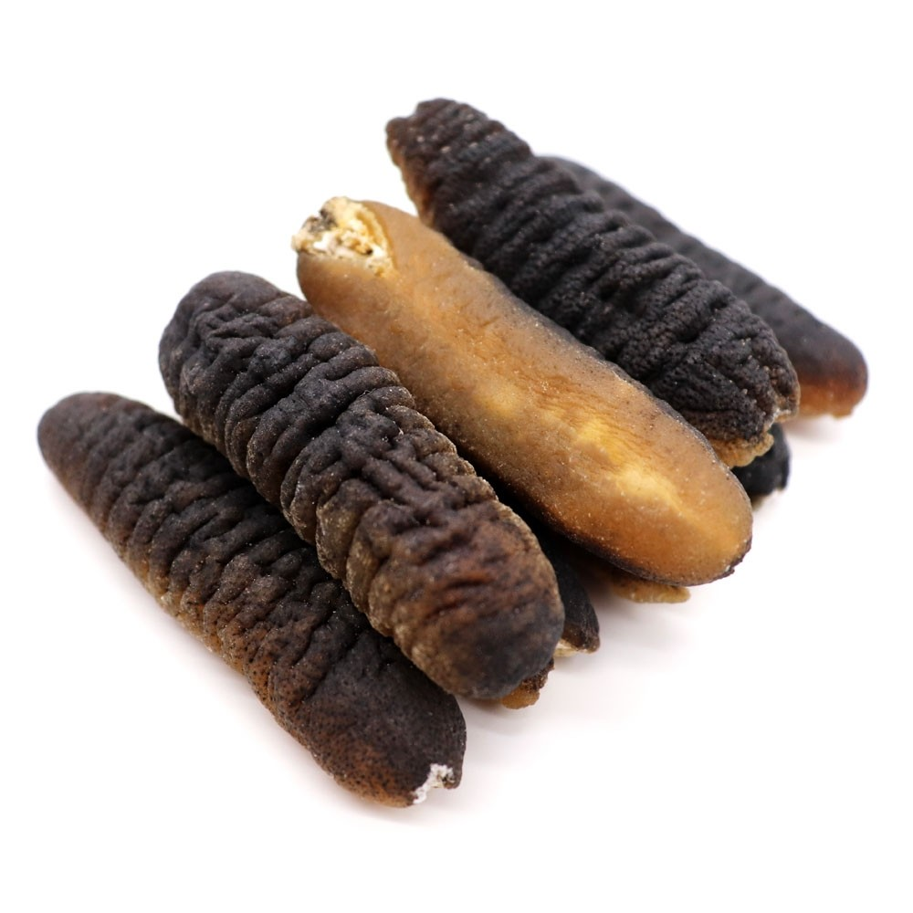 30-40 GOLDEN HILL SEA CUCUMBER