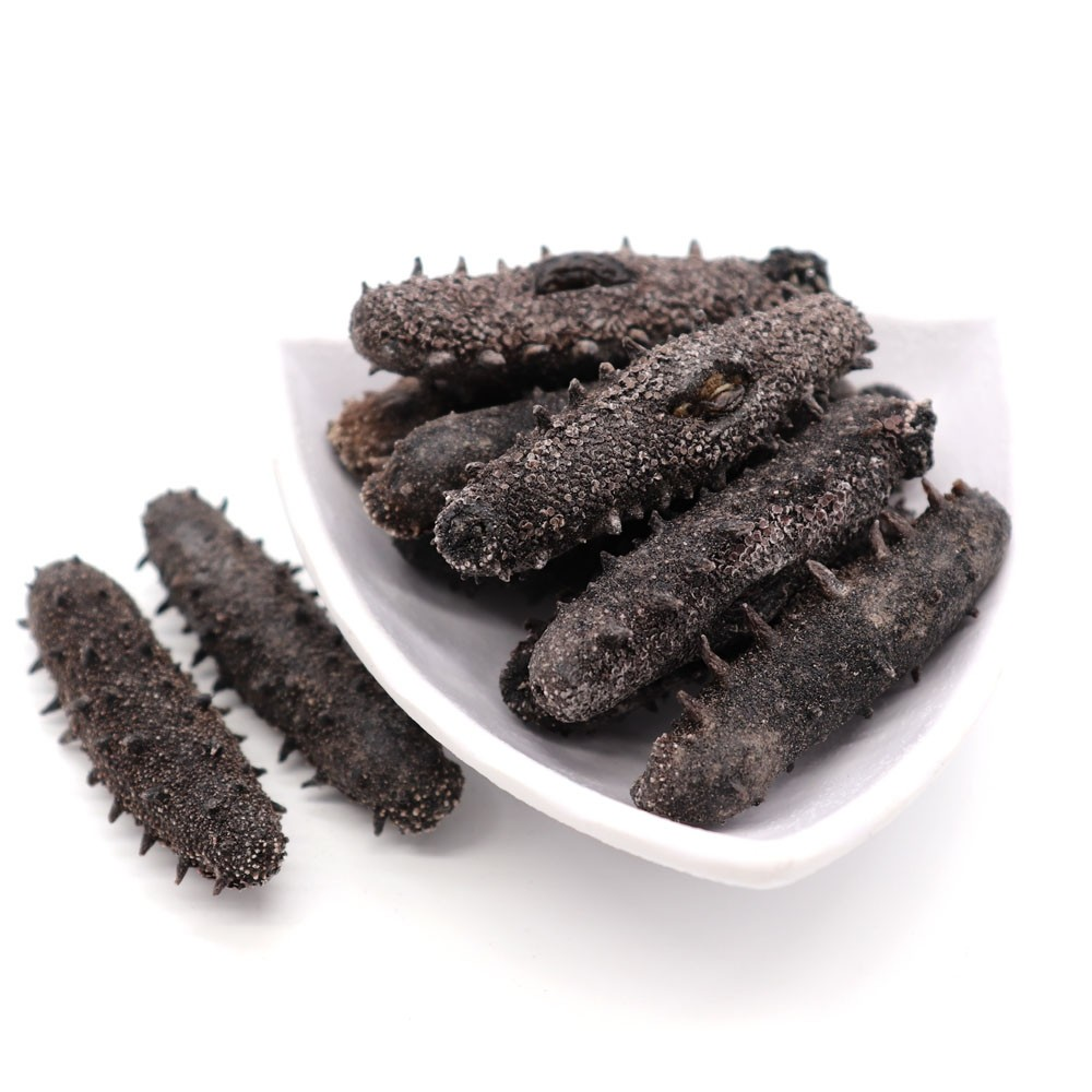 JAPAN KANTO SEA CUCUMBER (LARGE)