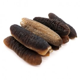 GOLDEN HILL SEA CUCUMBER (20-30 PIECES/KG)