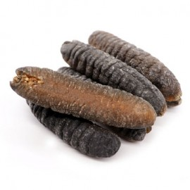 MIDDLE EAST SEA CUCUMBER (28-30 PIECES/KG)