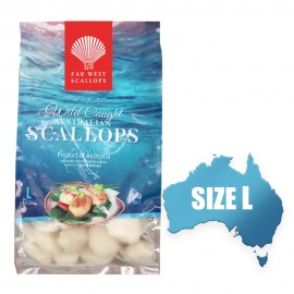 20-30 FAR WEST AUST FROZEN SCALLOP (LARGE)